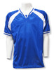Spitfire Soccer Jersey in Royal/White