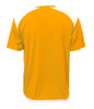 Diadora Grinta short sleeve soccer goalkeeper jersey, Gold, back