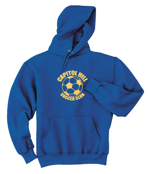 Team Logo Hoody example
