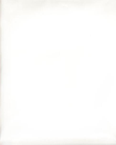 Plain Headtie 5 (White)