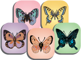fab-and-funky-butterflies.jpg