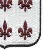 307th Airborne Medical Battalion Patch | Lower Right Quadrant