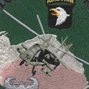 101st Airborne Division 2003 Patch | Center Detail