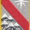 43rd Sustainment Brigade Patch | Center Detail