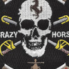 3rd Squadron 4th Aviation Cavalry Regiment Patch   Center Detail