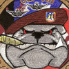 2nd Squadron 82nd Aviation Regiment D Company Patch | Center Detail