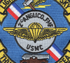 2nd ANGLICO Patch - Air Naval Gunfire Liaison Company | Center Detail