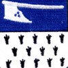 271st Infantry Regiment Patch | Center Detail