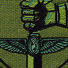 25th Air Support Operations Squadron Patch OD Green | Center Detail