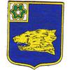 40th Infantry Regiment Patch