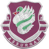 326th Airborne Medical Battalion Patch