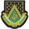 240th Cavalry Regiment Patch