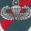 20th Special Forces Group Airborne MPB Flash Patch | Center Detail