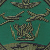 204th Military Intelligence Battalion Patch | Center Detail