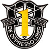 1st Special Forces Group Yellow Patch