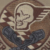 190th Fighter Squadron Desert Patch | Center Detail
