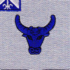 224th Infantry Regiment Patch | Center Detail