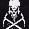 172nd Infantry - 3rd Mountain Battalion | Center Detail
