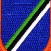 160th Aviation Airborne Group Patch Flash | Center Detail