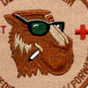 159th Medical Company (Forward) Patch | Center Detail