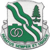 784th Tamk Battalion Patch