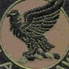 1st Cavalry Regiment OD Patch | Center Detail