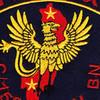 158th Avaition Battalion 101st Division C Company Patch | Center Detail