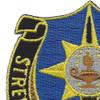 141st Military Intelligence Battalion Patch | Upper Left Quadrant