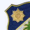134th Infantry Regiment Patch | Upper Left Quadrant