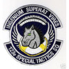 123rd Special Tactics Squadron (Color) Patch