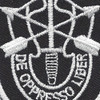 5th Special Forces Group Flash With Crest Patch | Center Detail