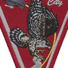 119th Fighter Squadron Atlanta City, NJ Patch | Center Detail