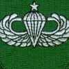 10th Special Forces Group Senior Jump Wings Patch | Center Detail