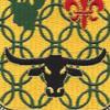 149th Armor Regiment Patch   Center Detail
