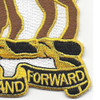 10th Cavalry Regiment Patch   Lower Right Quadrant