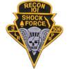101st Division 506th Airborne Infantry Regiment 3rd Battalion Patch