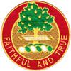 5th Field Artillery Battalion Patch DUI