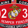 0231 Intelligence Specialist MOS Patch | Center Detail