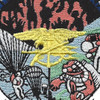 Seals Sea Air And Land Special Forces Patch | Center Detail
