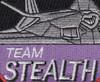 Lockheed F-117 Nighthawk Stealth Fighter Team Patch | Center Detail