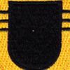 509th Airborne Infantry Regiment 3rd Battalion Patch Flash   Center Detail