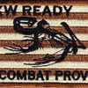 EXW Ready Expeditionary Warfare Patch Combat Proven | Center Detail