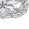 EOD Explosive Ordnance Disposal Senior Badge Silver Patch | Lower Right Quadrant