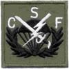 506th Airborne Infantry Regiment Patch CSF