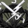 506th Airborne Infantry Regiment Patch CSF | Center Detail