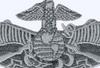 Fleet Marine Force Badge Patch