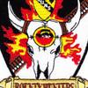 4th Squadron 227th Aviation Regiment Attack Recon Battalion HQ Patch   Center Detail