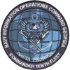 Commander Tenth Fleet Information Operations Command Georgia Patch