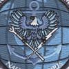 Commander Tenth Fleet Information Operations Command Georgia Patch | Center Detail