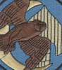 67th SOS Special Operations Squadron Patch Combat Shadow | Center Detail